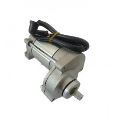 ZS190 Engine Starter Motor