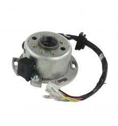 150cc Lifan Rotor