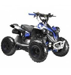 """Miniquad RAPTOR 6"""" 125cc"""