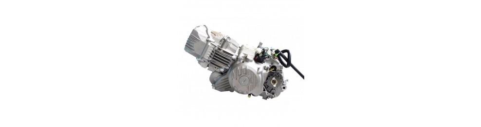 ZS 155/190cc 2V