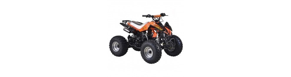 Mini-Quads Gasolina